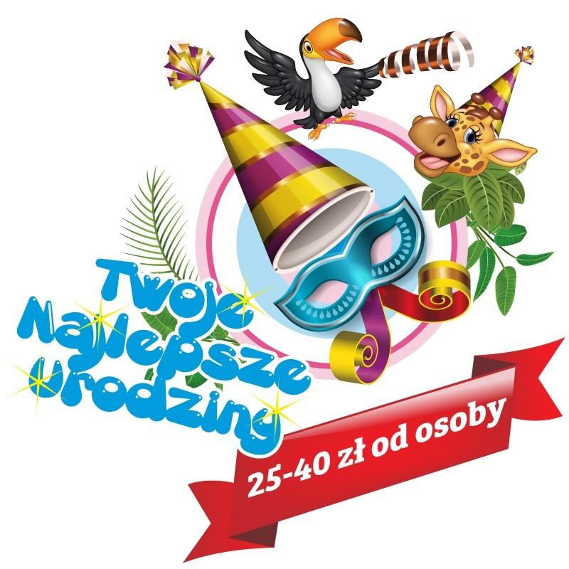 sala zabaw Zoolandia - najlepsze urodziny dla dzieci